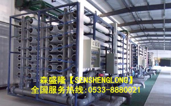 吉林辽源反渗透膜阻垢剂应用实例